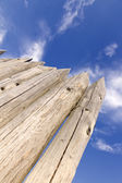 Natural wooden background. — Stock Photo