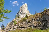 Rocky landscape in Poland. — Stock Photo