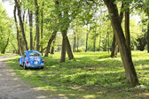 Blue car in spring park. — Stock Photo