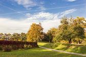 Colorful garden. Autumn time. — Stock Photo