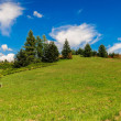 Green hill and sky with clouds- Landscape — Stock Photo
