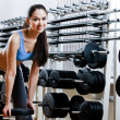Stock Photo: Womchooses dumbbells