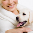 Closeup of puppy of labrador on the hands of woman — Stock Photo