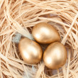 Nest with three golden quail eggs — Stock Photo