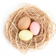 Multicolored easter eggs are in the nest — Stock Photo