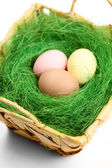 Multicolored easter eggs are in wattled basket — Stock Photo