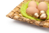 Colorful easter eggs are on wattled plate — Stock Photo