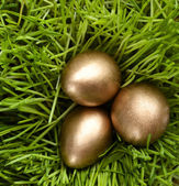 Golden eggs are in the grass — Stock Photo