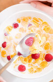 Top view of the plate with muesli, milk and strawberry — Stock Photo