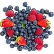 Strawberry, bilberry and raspberry — Stock Photo