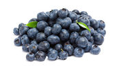 Close up shot of heap of bilberry — Stock Photo