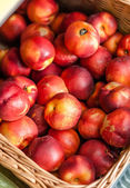 Close up of heap of nectarine — Stockfoto
