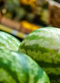 Close up of green watermelons — Stock Photo