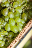 Close up of grape in the braided basket — Stock Photo