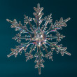 Snowflake shape — Stock Photo #7958135