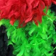 Colorful feathers — Stock Photo #2164374