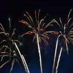 Firework diversity, night salute, carnival. — Stock Photo #22491769