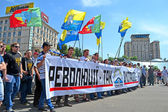 Political meeting on May 18, 2013 in Kiev, Ukraine. — Stock Photo