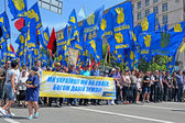 Freedom Party Political meeting on May 18, 2013 in Kiev, Ukraine. — Stock Photo