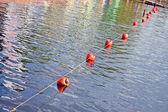 Turuncu bariyer şamandıra satırı su, çevre. — Stok fotoğraf