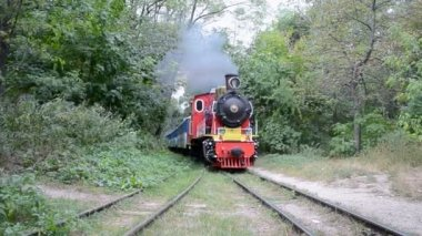 Vintage locomotive in the forest. — Video Stock