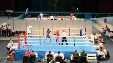 Junior Boxweltmeisterschaften 2013 in Kiew, ukraine. — Stockvideo