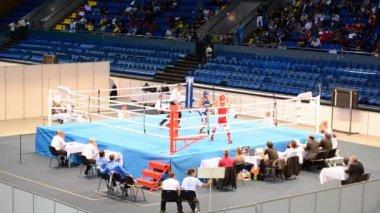 Junior World Boxing Championships 2013 in Kiev, Ukraine. — Stock Video