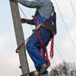 Electrician on the pylon - Stock Photo