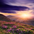 Beautiful sunset in the spring in the mountains — Stock Photo #22808756