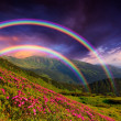 Rainbow over the flowers — Stock Photo #22808774