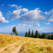 Sunny landscape — Stock Photo #22808986