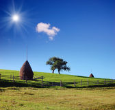 Country Scene with haystacks — Stock Photo