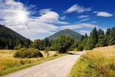 Road to the mountains — Stock Photo