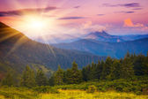 Evening sun in the mountains — Stock Photo