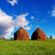 Stock Photo: Haystacks in mountain village
