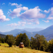 Haystack in the mountains — Stock Photo