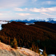 Стоковое фото: Spring day in the mountains