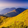 Morning in mountains — Stock Photo #29569095