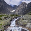 Mountain stream — Stock Photo #29569217
