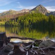 Shore of a mountain lake — Stock Photo