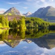 Постер, плакат: Reflection in the lake