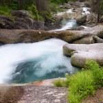 Mountain river — Stock Photo #29569345