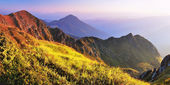 Summer in the mountains — Stock Photo
