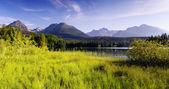 Mountain panorama with lake — Stock Photo