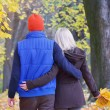 Couple in autumn park — Stock Photo #30877673