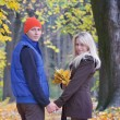 Stock Photo: Man and a woman in the autumn park