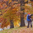 Stock Photo: Couple in autumn park