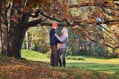 Coppia felice nel parco — Foto Stock
