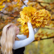 Girl in the autumn forest — Stock Photo #31571629