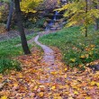 Stockfoto: Autumn in the park